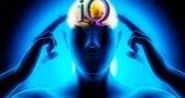Самый умный человек в мире: IQ самых умных людей планеты Земля