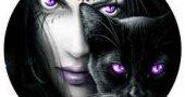К чему снится черная кошка?