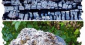 Как применять древесную золу как удобрение?