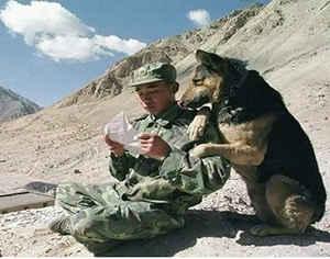Солдат читает письмо