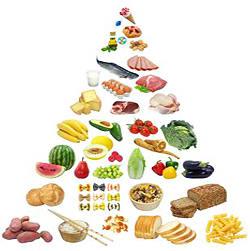 диетическое питание для похудения рецепты с фото