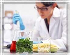 В лаборатории по определению качества продуктов