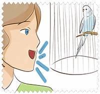 Разговор с попугаем