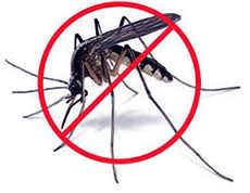 Стоп - комарик