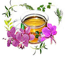 Чайный состав кипрея
